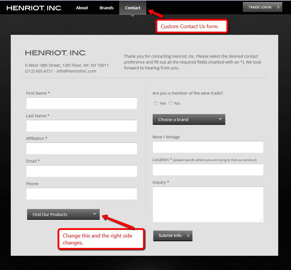 screenshot of custom form controls